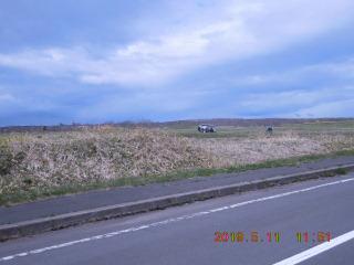 SSCN2697.JPG